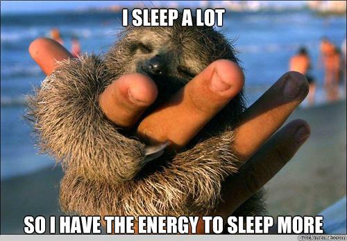 I SLEEP A LOT  SO I HAVE THE ENERGY TO SLEEP MORE   cute baby sloth