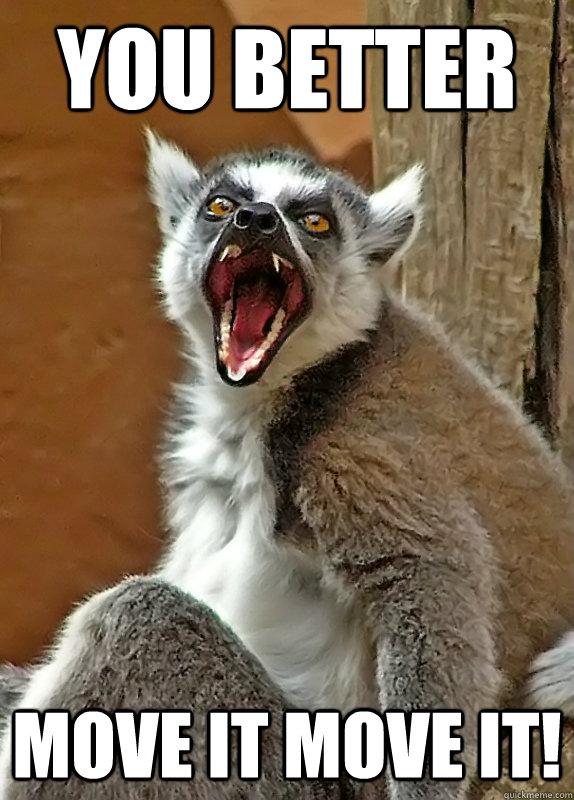 fded12d32536ebf34746ca642622fb9bd9d0b7c01f5ed5deb03c26e959aafc60 you better move it move it! angry lemur quickmeme