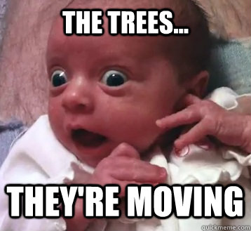 The trees... They're moving