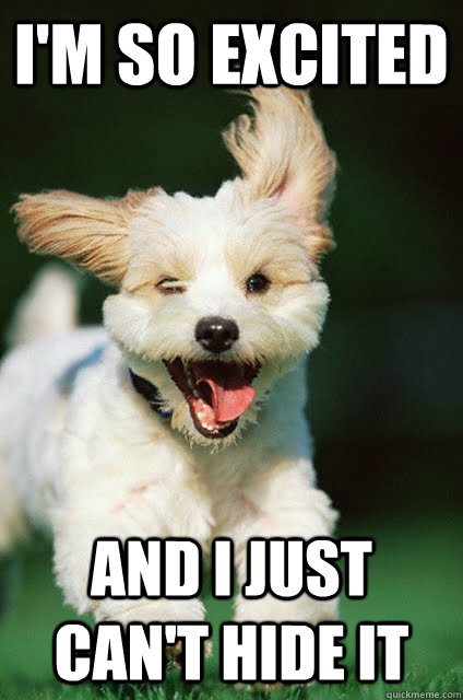 Funny Excited Face Meme : Excited puppy memes quickmeme