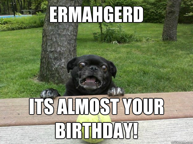 Ermahgerd Its almost your birthday!