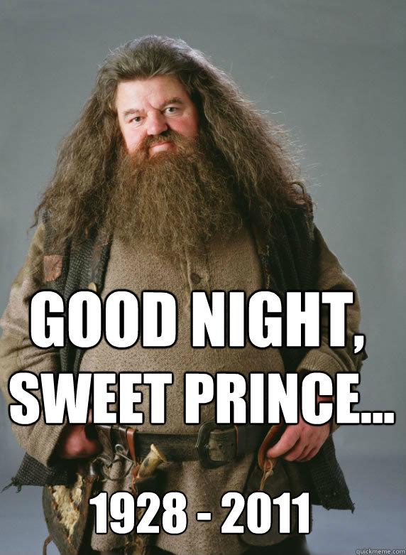 fe286b420e78c82f1b6babc2468a5ec3e1fc5ed0429420f7f16a9d3ba20aea2d goodnight sweet hagrid memes quickmeme