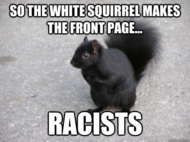 So the white squirrel makes the front page... Racists - So the white squirrel makes the front page... Racists  Misc