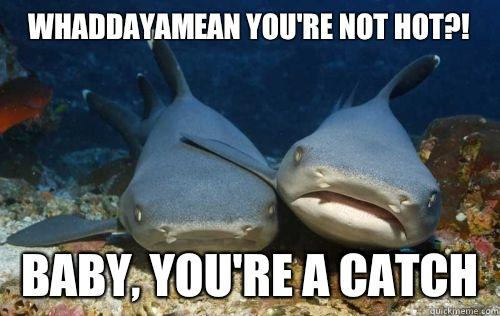 Whaddayamean you're not hot?! Baby, you're a catch  Compassionate Shark Friend