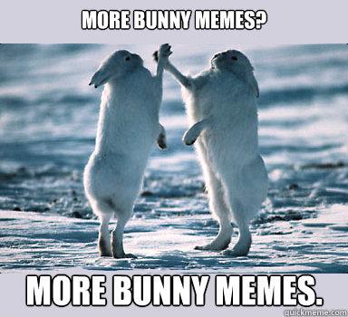 Funny Bunny Sex 41