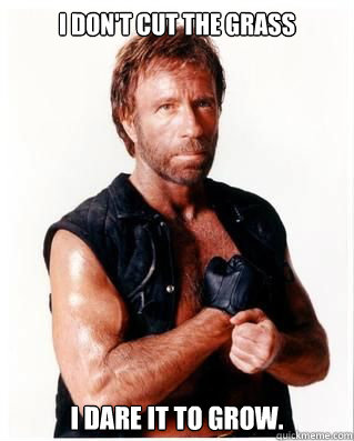 I don't cut the grass I dare it to grow. - I don't cut the grass I dare it to grow.  Chuck Norris