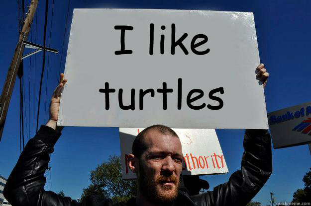 Disappointed Turtle Meme i Like Turtles Disappointed
