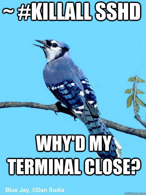 ~ #killall sshd Why'd my terminal close? - ~ #killall sshd Why'd my terminal close?  Blue Team Bird