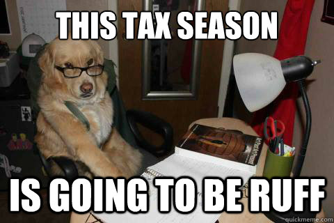 This tax season is going to be ruff - This tax season is going to be ruff  Financial Advice Dog