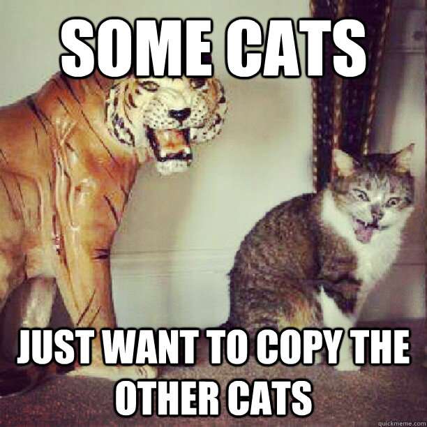 some cats just want to copy the other cats