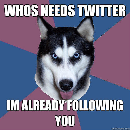 whos needs twitter Im already following you - whos needs twitter Im already following you  Creeper Canine