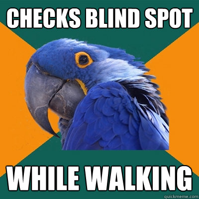 Checks Blind Spot while walking - Checks Blind Spot while walking  Paranoid Parrot