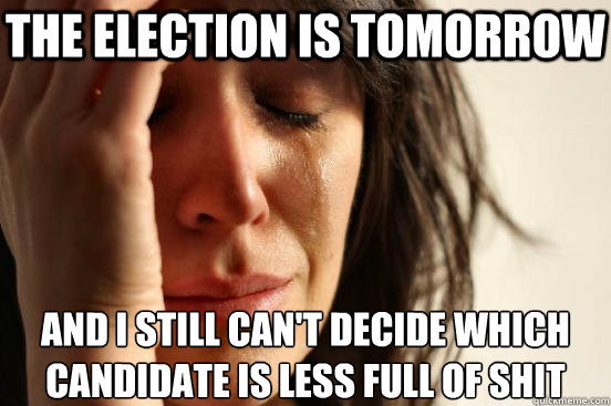 the election is tomorrow and i still can't decide which candidate is less full of shit - the election is tomorrow and i still can't decide which candidate is less full of shit  First World Problems