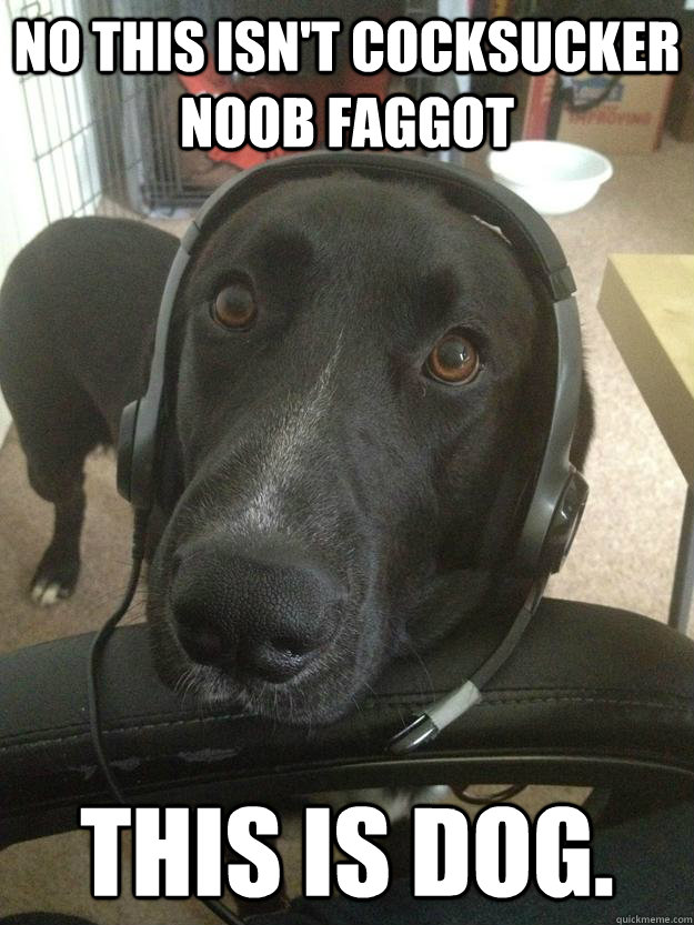 No this isn't cocksucker noob faggot This is dog. - No this isn't cocksucker noob faggot This is dog.  Misc