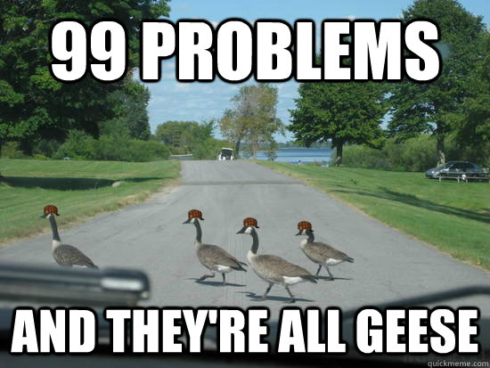99 Problems And they're all geese  Scumbag Geese