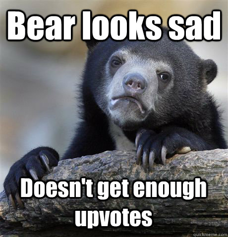 Bear looks sad Doesn't get enough upvotes - Bear looks sad Doesn't get enough upvotes  Confession Bear