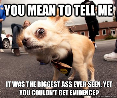 You mean to tell me It was the biggest ass ever seen, yet you couldn't get evidence? - You mean to tell me It was the biggest ass ever seen, yet you couldn't get evidence?  Skeptical Dog