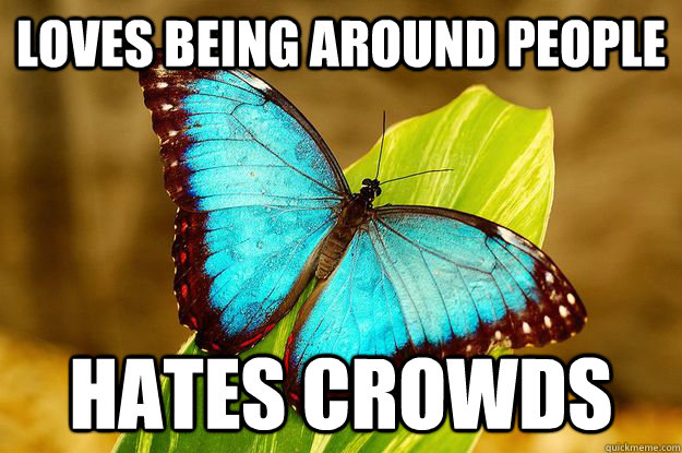 Loves being around people Hates crowds - Loves being around people Hates crowds  Misc