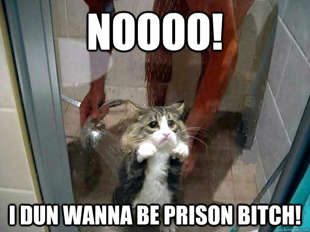 fed3b0cecb5b7547a57a17a1821ca532de85fb65cebf146539a4cac21f2a9ded noooo! i dun wanna be prison bitch! shower kitty quickmeme