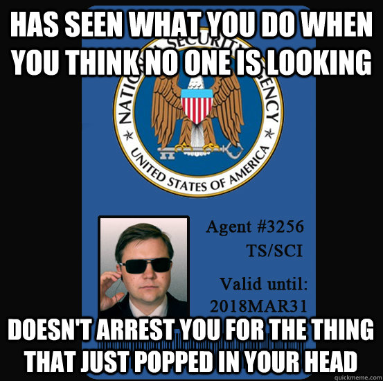 Has seen what you do when you think no one is looking Doesn't arrest you for the thing that just popped in your head  Good Guy NSA