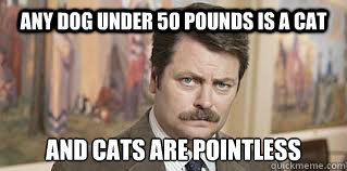 Any dog under 50 pounds is a cat and cats are pointless
