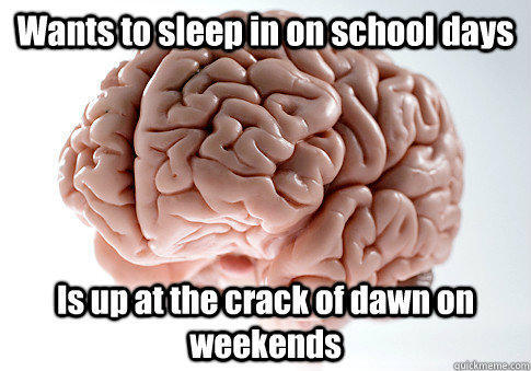 Wants to sleep in on school days Is up at the crack of dawn on weekends  - Wants to sleep in on school days Is up at the crack of dawn on weekends   Scumbag Brain