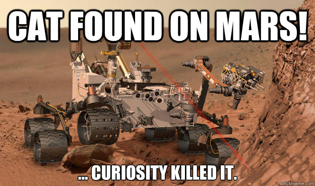 Cat Found on Mars! ... Curiosity killed it.  Unimpressed Curiosity