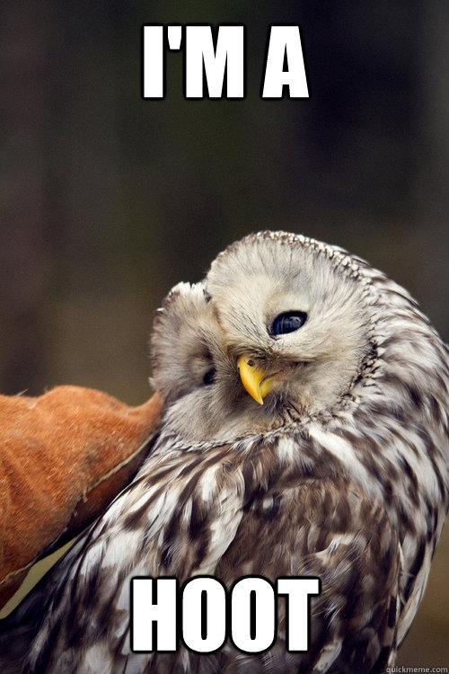 Ridiculously Photogenic Owl memes | quickmeme Raccoon Eyes Makeup