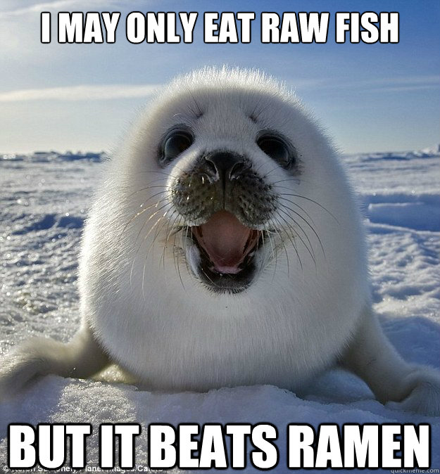 I MAY ONLY EAT RAW FISH BUT IT BEATS RAMEN - I MAY ONLY EAT RAW FISH BUT IT BEATS RAMEN  Easily Pleased Seal