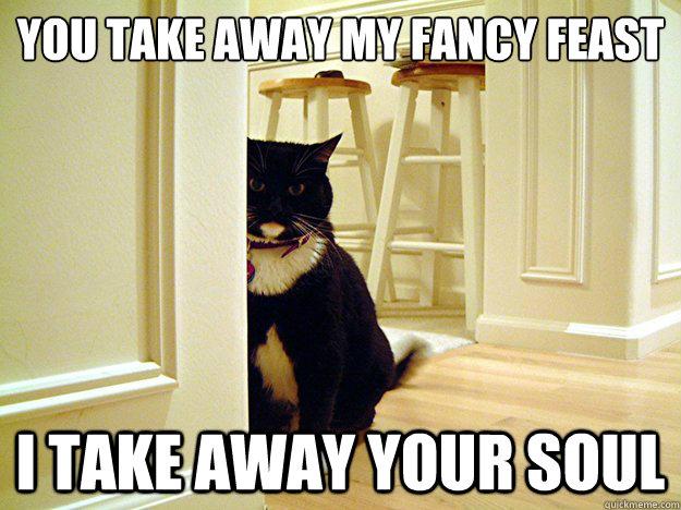 ff30623082b9887fda25aad078723f2d66bfc53bb91427e7d52a21c97bfd6377 you take away my fancy feast i take away your soul serial killer