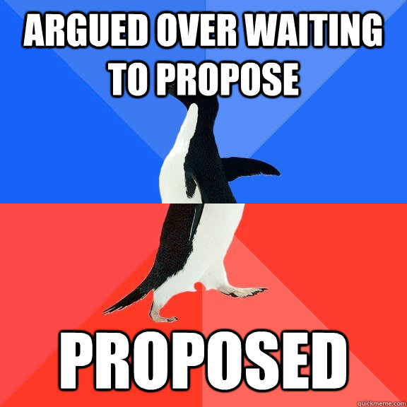 Argued over waiting to propose Proposed - Argued over waiting to propose Proposed  Socially Awkward Awesome Penguin