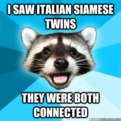 I saw italian siamese twins they were both connected - I saw italian siamese twins they were both connected  Lame Pun Raccoon