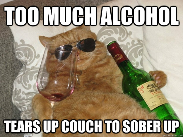 too much alcohol tears up couch to sober up