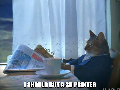 I should buy a 3D printer