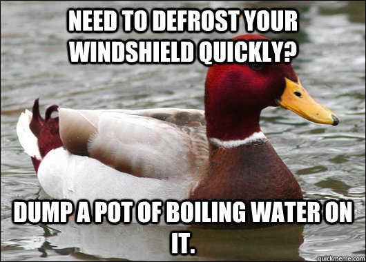 Need to defrost your windshield quickly? Dump a pot of boiling water on it. - Need to defrost your windshield quickly? Dump a pot of boiling water on it.  Malicious Advice Mallard