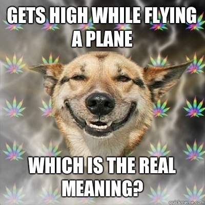 ff60d0ce2ba7fdea8d68e0e525277350737a5a8d236c40f60336b3d4866ed230 gets high while flying a plane which is the real meaning? stoner