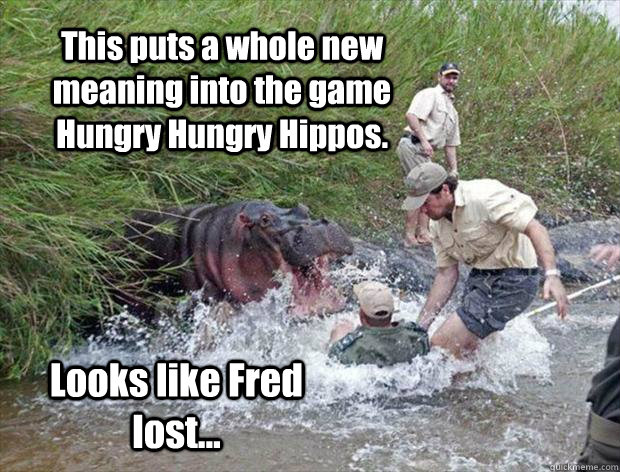 This puts a whole new meaning into the game Hungry Hungry Hippos. Looks like Fred lost... - This puts a whole new meaning into the game Hungry Hungry Hippos. Looks like Fred lost...  Misc