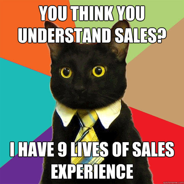 You think you understand sales? I have 9 lives of sales experience - You think you understand sales? I have 9 lives of sales experience  Business Cat