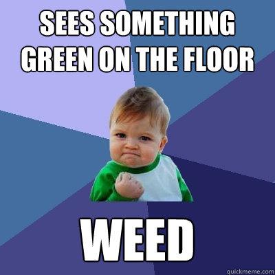 Sees something green on the floor Weed  Success Kid