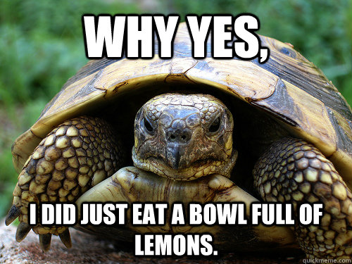 Why yes, I DID just eat a bowl full of lemons.