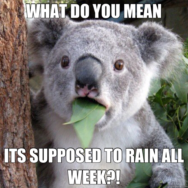 WHAT DO YOU MEAN ITS SUPPOSED TO RAIN ALL WEEK?!