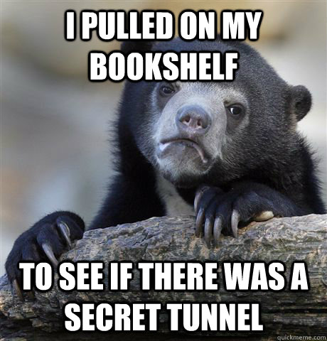 I pulled on my bookshelf to see if there was a secret tunnel - I pulled on my bookshelf to see if there was a secret tunnel  Confession Bear