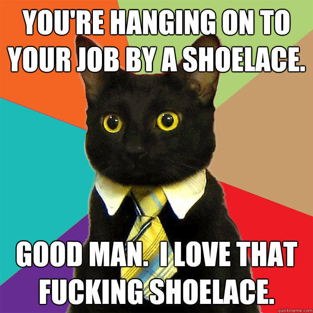 You're hanging on to your job by a shoelace. Good man.  I love that fucking shoelace. - You're hanging on to your job by a shoelace. Good man.  I love that fucking shoelace.  Business Cat