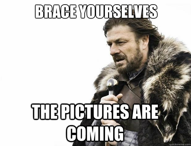 Brace yourselves The pictures are coming - Brace yourselves The pictures are coming  Misc